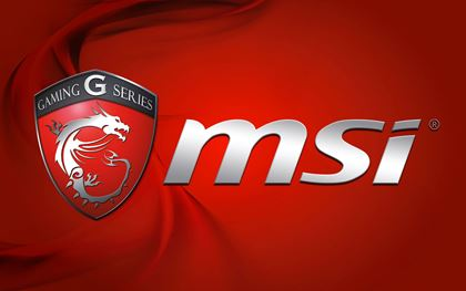 Picture for manufacturer Msi